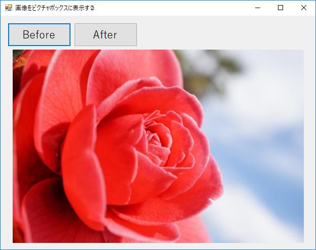 ピクチャボックスに画像を表示する実行結果1の画像